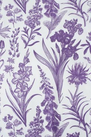 Dzianina jersey bawełniany botaniczny kwiaty biało fioletowy 160 cm 150 g/m2 thumbnail