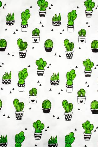 Dzianina interlock biały z nadrukiem - kaktusy - 140cm  150g/m2 thumbnail