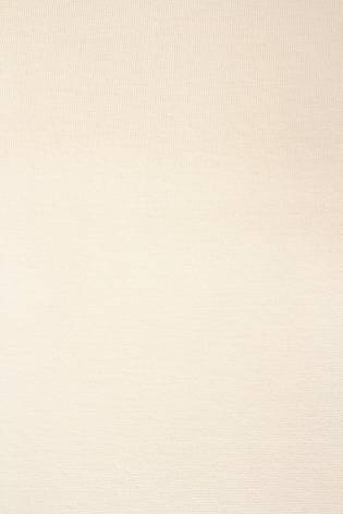 Dzianina jersey beżowy - 95cm/190cm 170g/m2 thumbnail