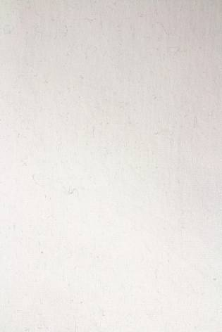 Dzianina jersey chemiczna biel (śmietanka) GOTS - 180cm 150g/m2 thumbnail
