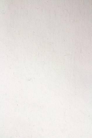 Knit - Jersey - Cream - GOTS - 170 cm - 320 g/m2 thumbnail